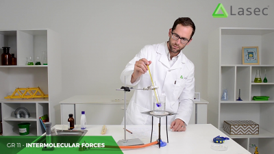 Intermolecular Forces in Action: Their Effect on Properties of Liquids